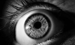 Nuova convenzione: oculista dr. Interlandi